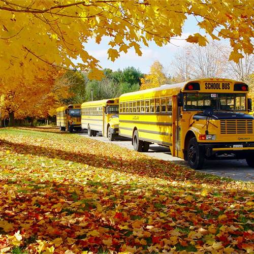 National School Bus Safety Week